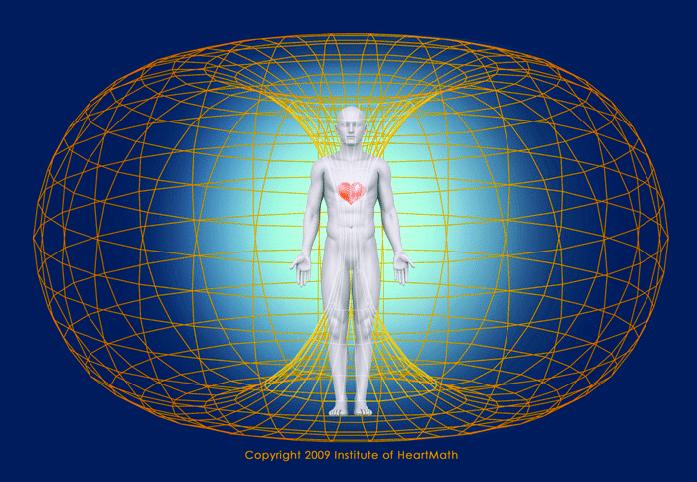 Il campo magnetico del cuore influenza la nostra realtà